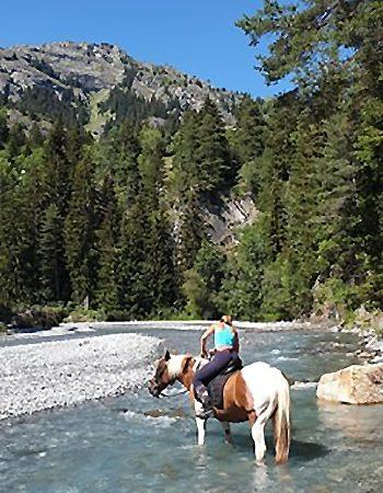 Auvergne Rhône-Alpes camping Les Mélèzes-La Fennaz